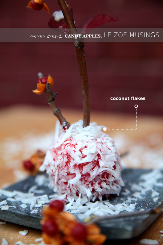 mini snow candy apples6