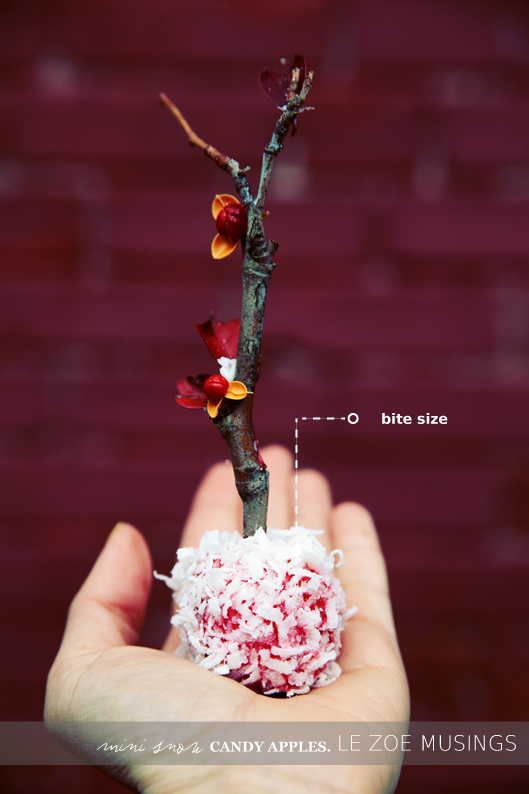 mini snow candy apples7