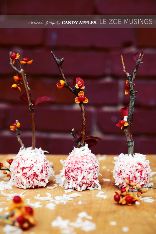 mini snow candy apples8