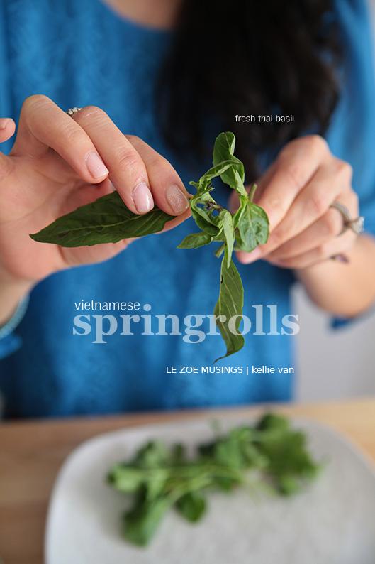 spring rolls2