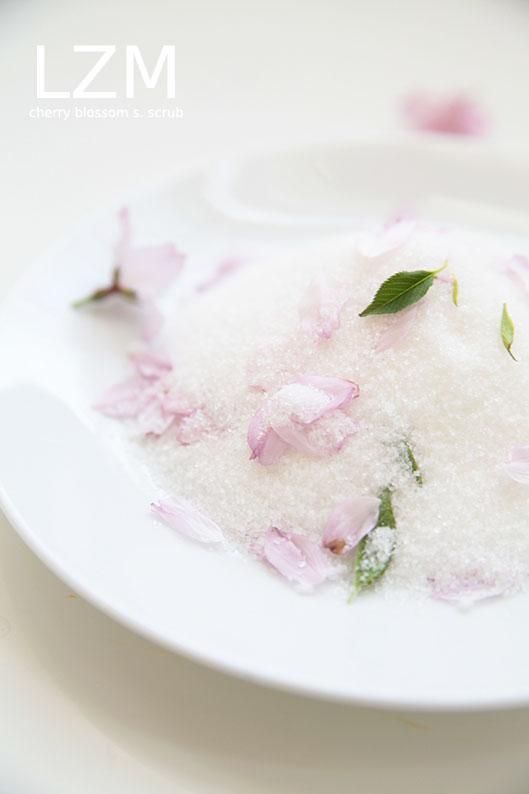 cherry blossom sugar scrub3