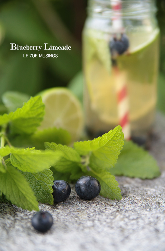 blueberry limeade4