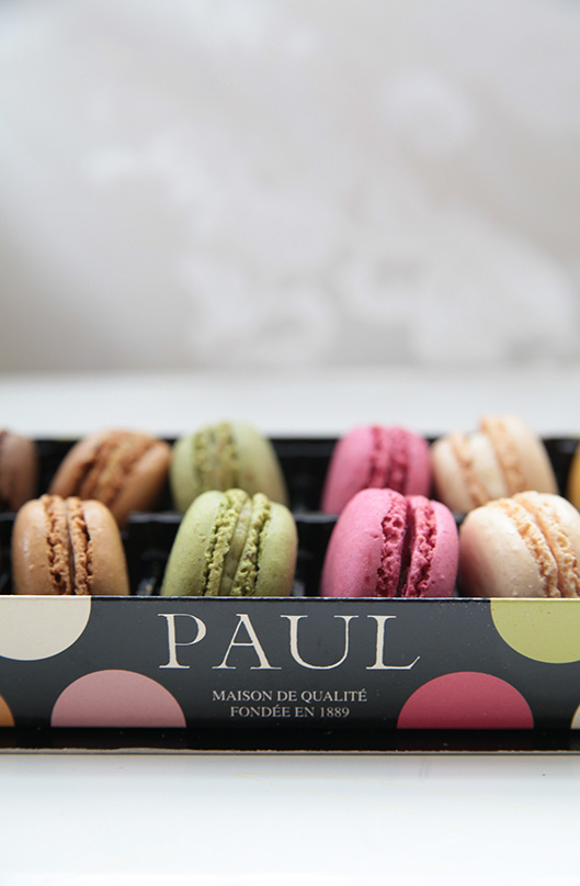 PAUL4