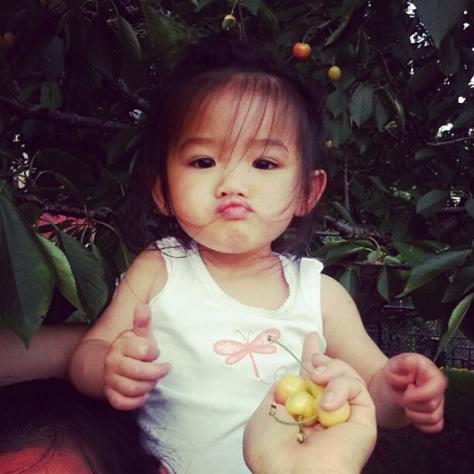 zoey cherry picking