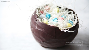 Chocolate Bird's Nest_Banner by Le Zoe Musings