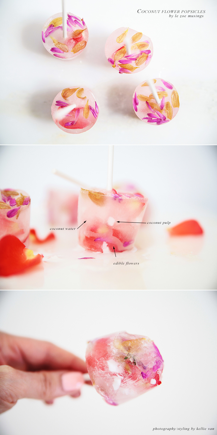 Coconut Water Popiscles_Le Zoe Musings 3