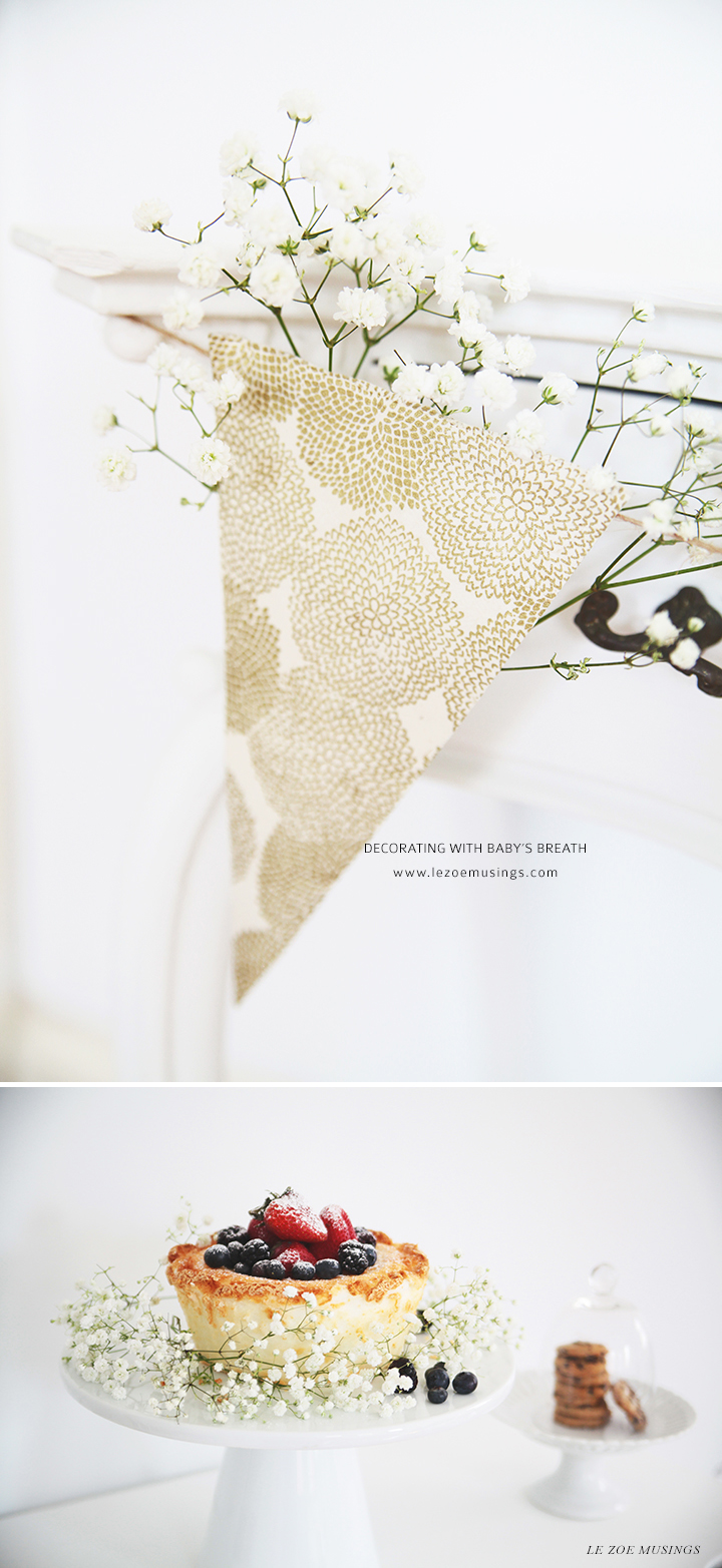 Baby's Breath by Le Zoe Musings 4