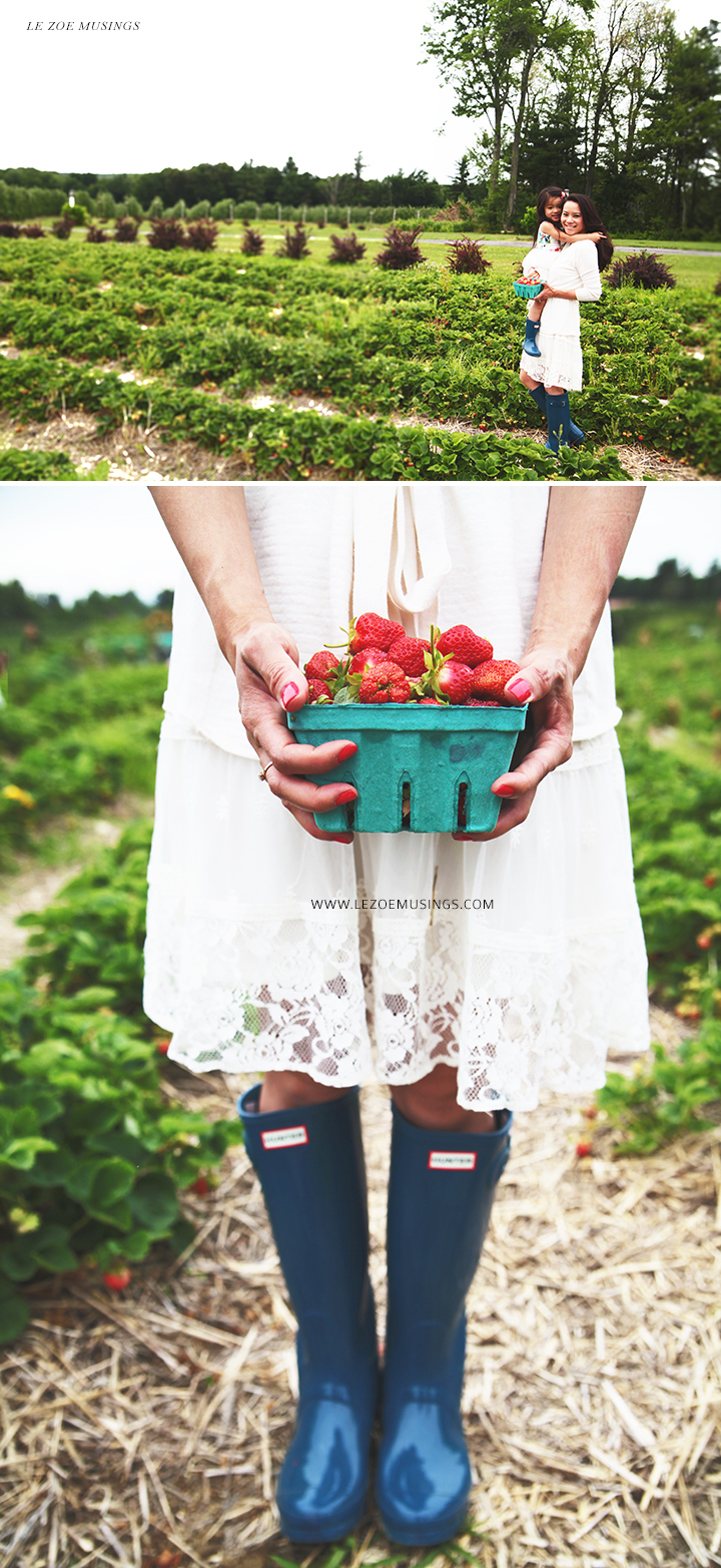 Strawberry Farm by Le Zoe Musings3