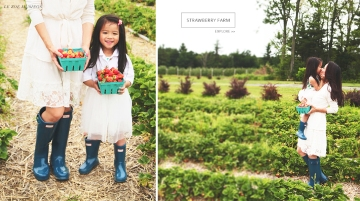 Strawberry Picking Banner by Le Zoe Musings