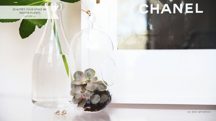 Beautify Your Space With Indoor Plants by Le Zoe Musings_Banner