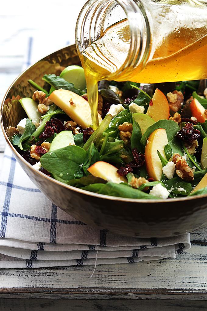 apple-cranberry-walnut-salad-4