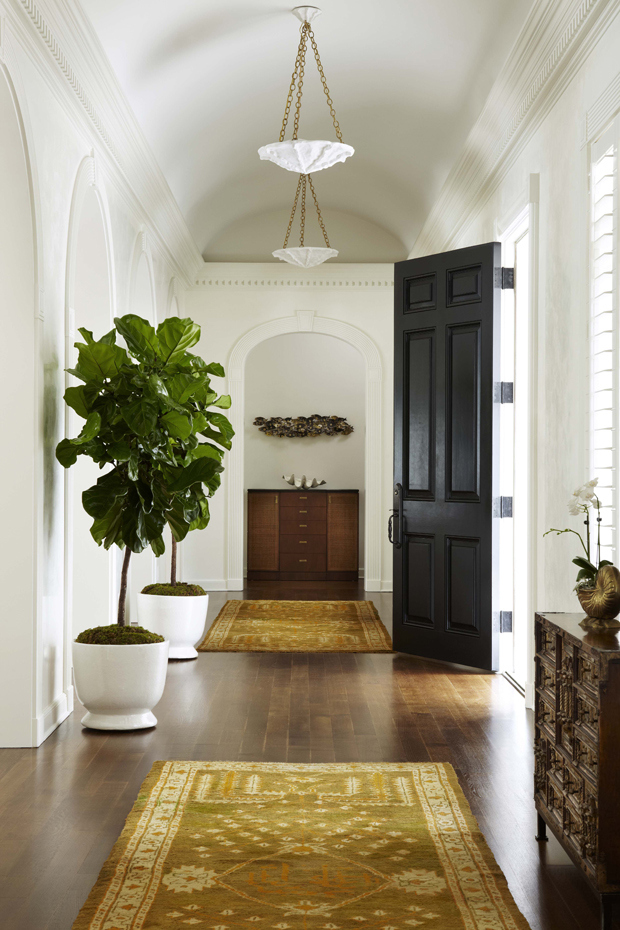 Fiddle Leaf Fig8