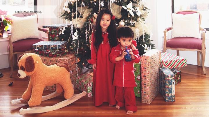 Le Zoe Musings Christmas Banner