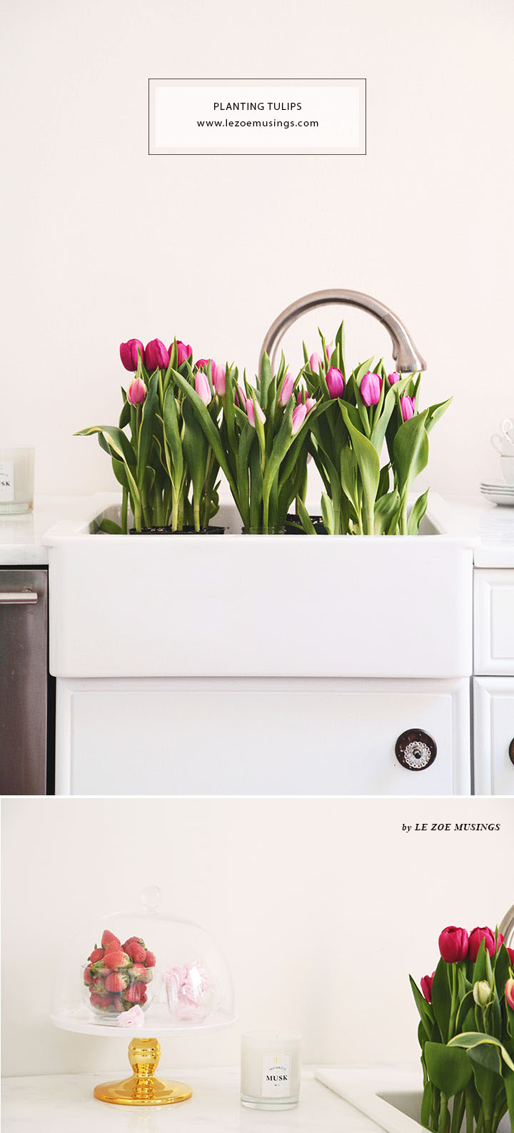 Spring Tulips in a White Kitchen by Le Zoe Musings 2