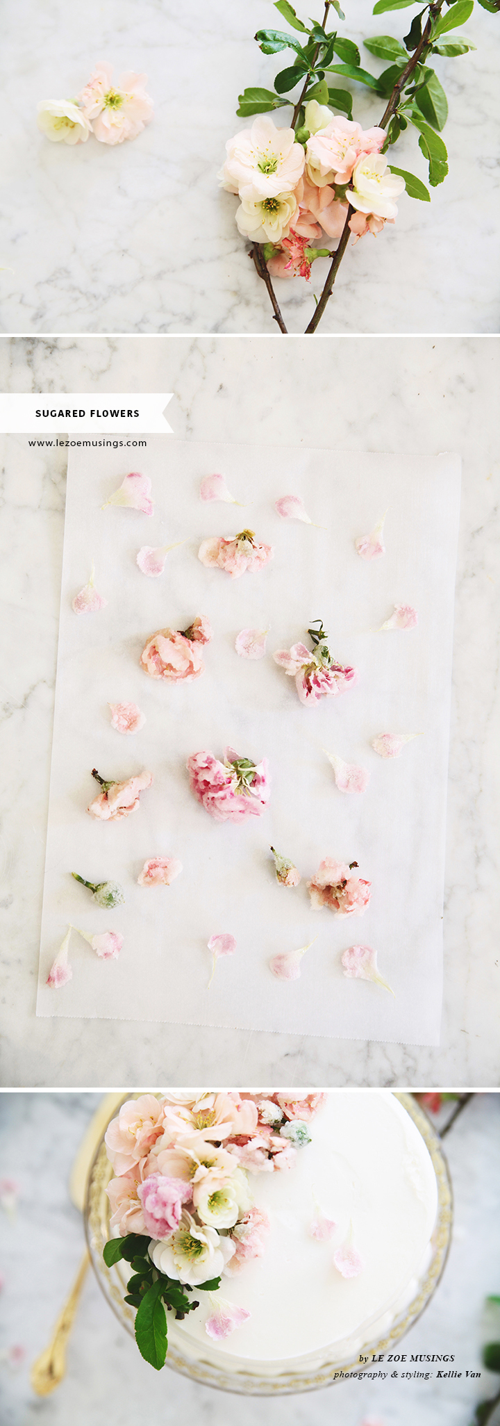 DIY Sugared Edible Flowers_by Le Zoe Musings H