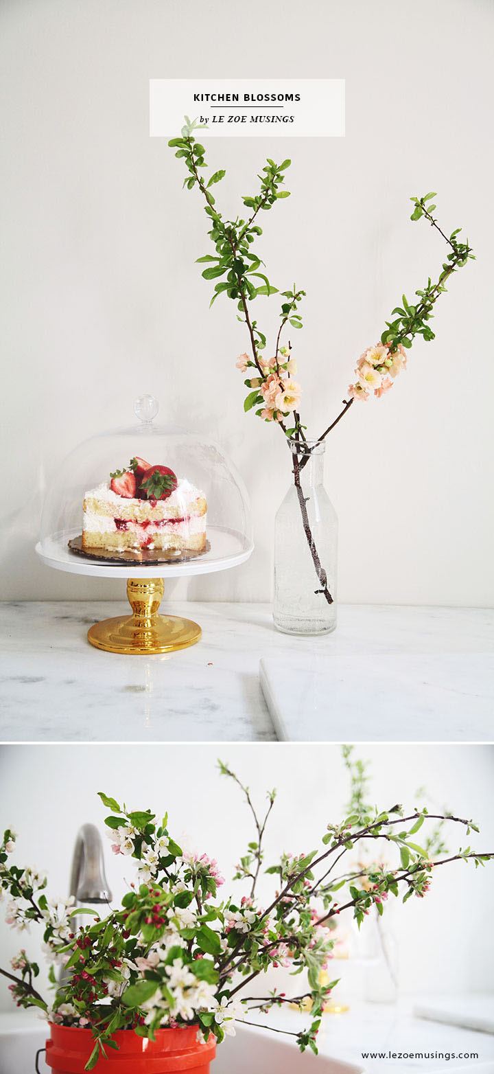 Kitchen Blossoms by Le Zoe Musings2
