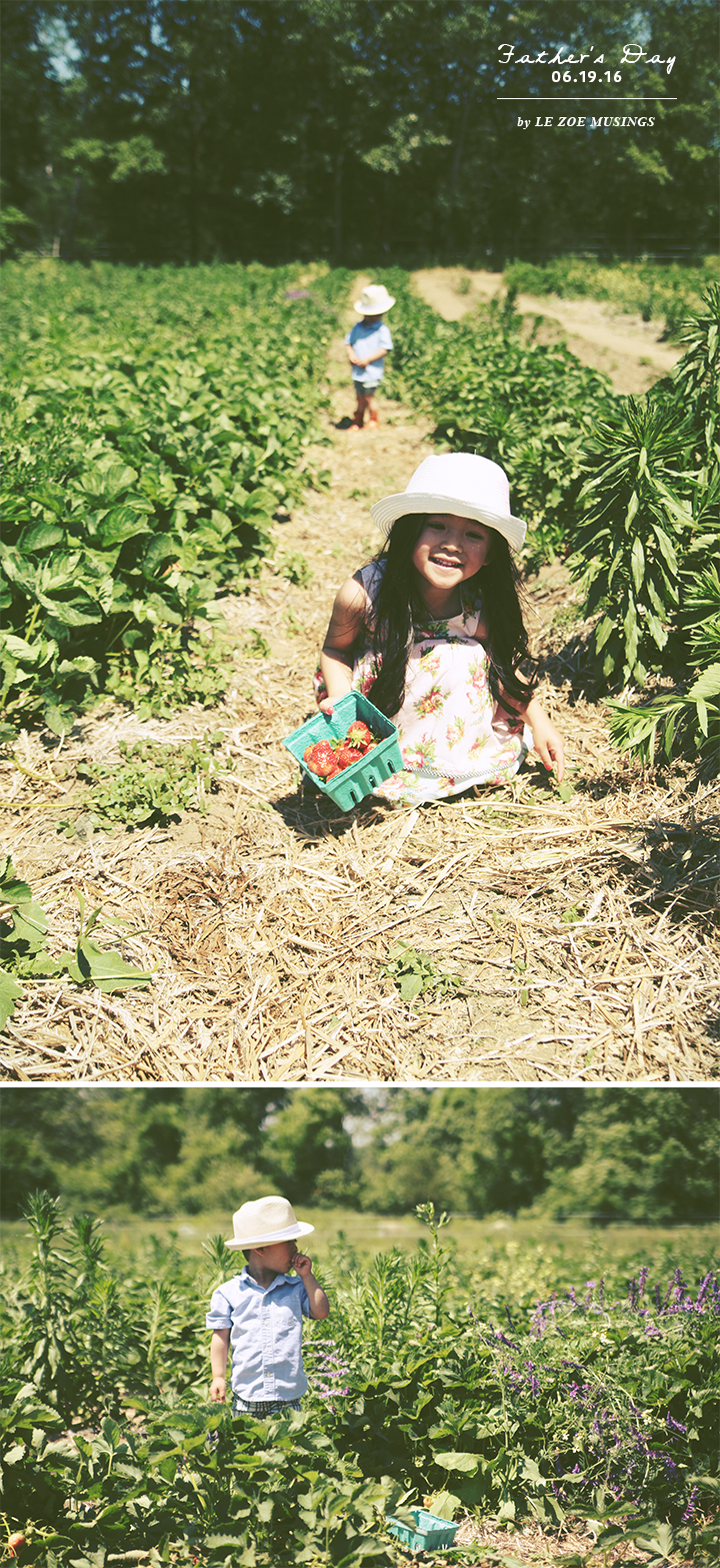 Father's Day Strawberry Picking3 by Le Zoe Musings
