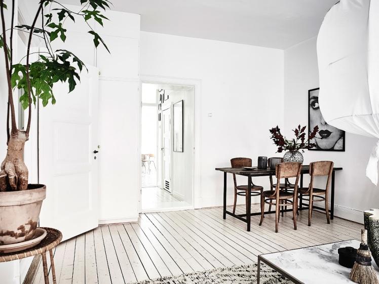 swedish-home9